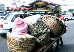 vegetable vendor inBankerohan.